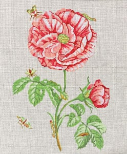 click here to view larger image of English Rose (hand painted canvases)