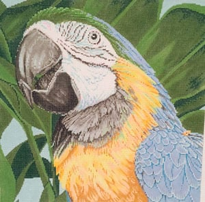 click here to view larger image of Parrot Blue and Yellow Macaw (hand painted canvases)