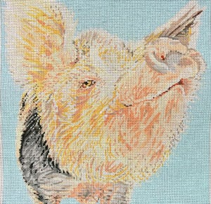 click here to view larger image of Snooty Pig (hand painted canvases)