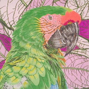 click here to view larger image of Parrot Buffon or Great Green McCaw (hand painted canvases)