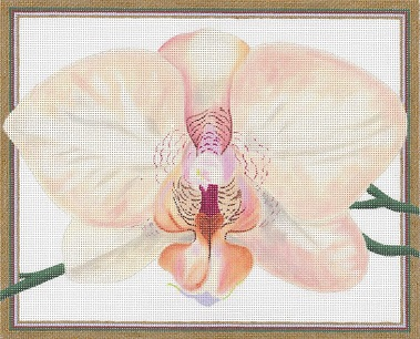 click here to view larger image of Salmon Orchid (hand painted canvases)