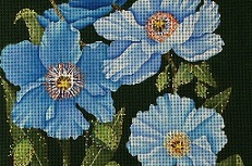 click here to view larger image of Giant Blue Himalayan Poppy (hand painted canvases)