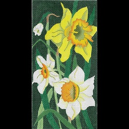 click here to view larger image of Daffodil EGC (hand painted canvases)