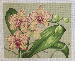 click here to view larger image of Orchids (hand painted canvases)