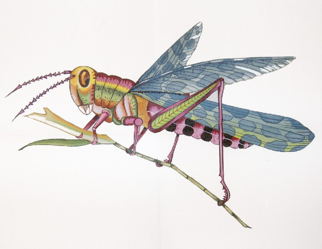 click here to view larger image of Grasshopper - Small (hand painted canvases)