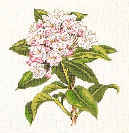 click here to view larger image of Wildflower Mountain Laurel (hand painted canvases)