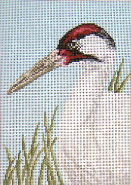 Whooping Crane - 18M - click here for more details about this hand painted canvases