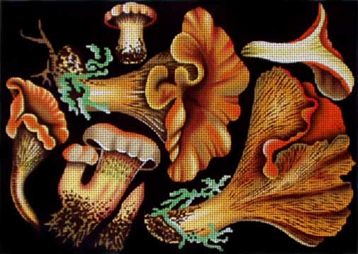 click here to view larger image of Vintage Mushrooms/Chanterelles (hand painted canvases)