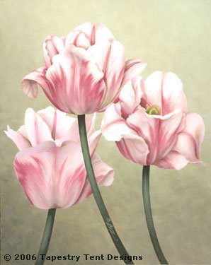click here to view larger image of Pink and White Tulips - 13ct (hand painted canvases)