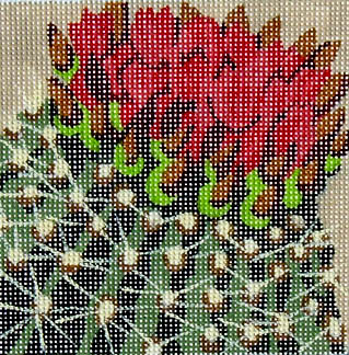 click here to view larger image of Cactus Flowers (hand painted canvases)