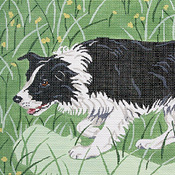 click here to view larger image of Border Collie (hand painted canvases)