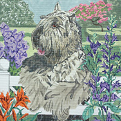 click here to view larger image of Bouvier des Flandres (hand painted canvases)
