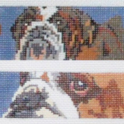 click here to view larger image of Bulldog Belt (hand painted canvases)