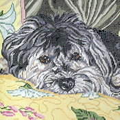 click here to view larger image of Wellington, the Havanese (hand painted canvases)