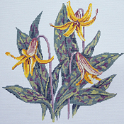 click here to view larger image of Trout Lily (hand painted canvases)