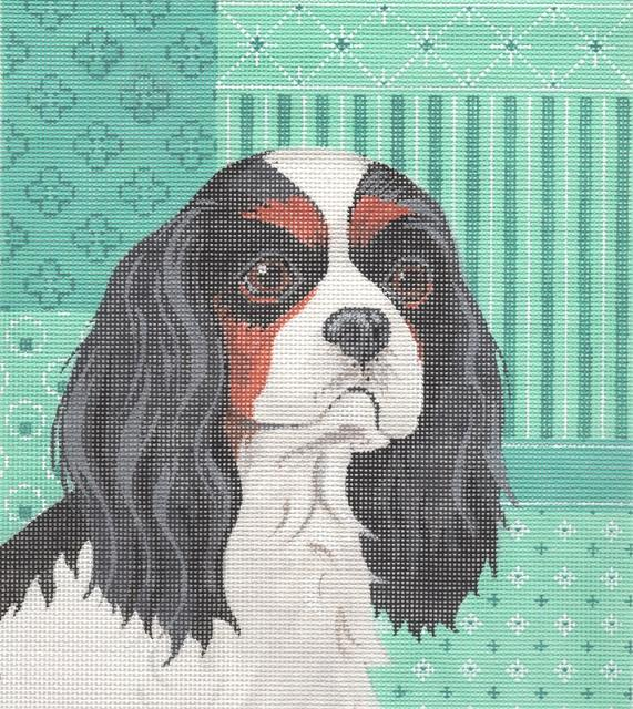 Cavalier King Charles Spaniel - click here for more details