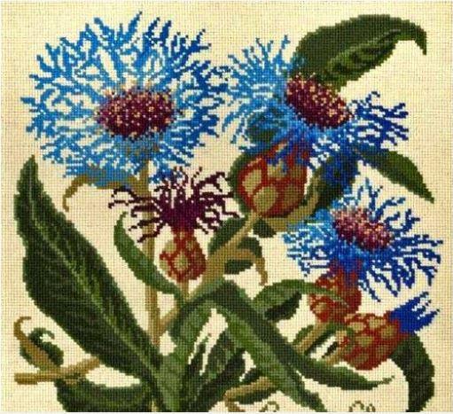 click here to view larger image of Cornflower (on Cream Background) (needlepoint kits)