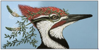click here to view larger image of Monocled Woodpecker (hand painted canvases)