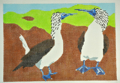click here to view larger image of Blue Footed  Boobies (hand painted canvases)