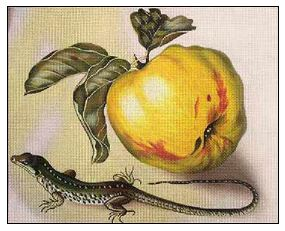 click here to view larger image of Apple and Lizard (hand painted canvases)