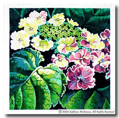 click here to view larger image of Lacecap Hydrangea (hand painted canvases)