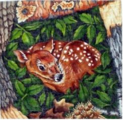 click here to view larger image of Fawn (hand painted canvases)