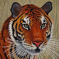 Tiger In Grasses - click here for more details