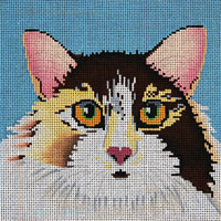 Calico Cat - click here for more details