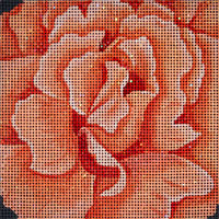 click here to view larger image of Just Joeys Rose (hand painted canvases)