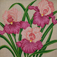 click here to view larger image of Carols Coral Irises (hand painted canvases)