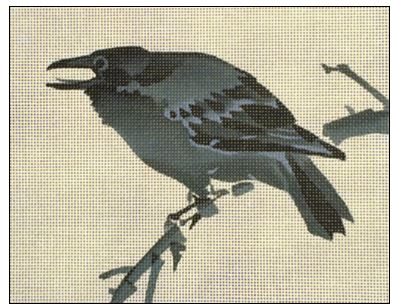 click here to view larger image of Koson Crow (hand painted canvases)