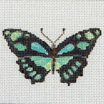 click here to view larger image of Butterfly 8 (hand painted canvases)