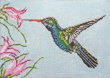 click here to view larger image of Broad Billed Hummingbird - 18ct (hand painted canvases)