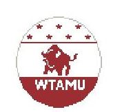 click here to view larger image of West Texas A and M (hand painted canvases)