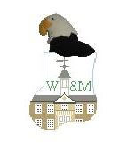 click here to view larger image of College of William and Mary With Eagle Mini Sock (hand painted canvases)
