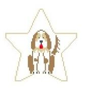 click here to view larger image of Springer Spaniel Star (hand painted canvases)