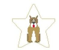 click here to view larger image of Boxer Star (hand painted canvases)