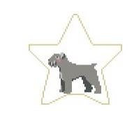 click here to view larger image of Bouvier Des Flandres Star (hand painted canvases)